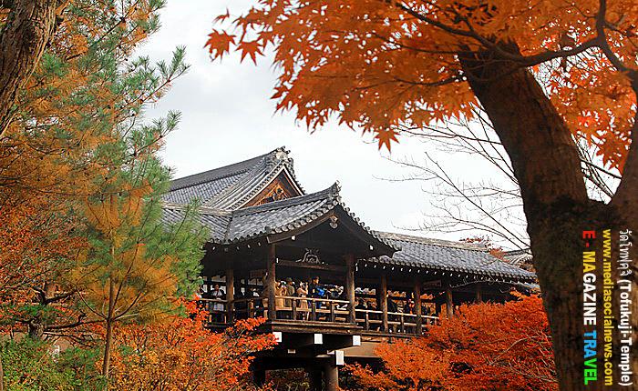 วัดโทฟุคุจิ เกียวโต ญี่ปุ่นใบไม้เปลี่ยนสี